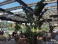 Ataşehir;Cafe-Pastahane